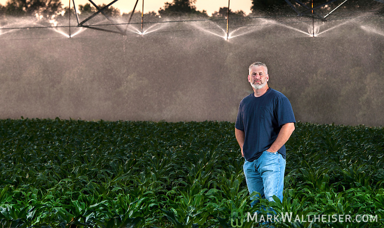 Randy Dowdy in his double row cornfields just outside the rural town of Pavo, Ga  near Valdosta in southwest Georgia May 9, 2013.