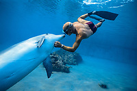Dolphin trainer kissing and scratching Bottlenose Dolphin, Tursiops truncatus, Dolphin Reef, Eilat, Israel, Red Sea.