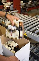 Europe/France/Corse/2B/Haute-Corse/Furiani: Brasserie Pietra , bière corse à la farine de châtaigne -Emballage et expédition