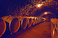 The Oremus winery in Tolcsva, Tokaj: New oak barrels in the underground cellar. Oremus is one of the few who uses silicon stoppers (and not wood or glass) for the barrels. Oremus is owned by the Alvarez family that also owns Vega Sicilia in Spain It is managed by Andras Bacso. Credit Per Karlsson BKWine.com