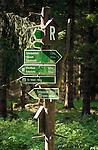 Deutschland, Thueringen, bei Bad Liebenstein: Wegweiser am Rennsteig Hoehenwanderweg | Germany, Thuringia, near Bad Liebenstein: signpost at Rennsteig hiking trail