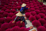 A worker crouches amid hundreds of bunches of brightly coloured incense sticks.  The bright red sticks, which cover more than 200 square metres, are left to dry in the sun before being taking into a workshop and infused with a fragrance.<br /> <br /> The beautiful images were captured in Quang Phu Cau, Vietnam by camera specialist Trung Anh.  SEE OUR COPY FOR DETAILS.<br /> <br /> Please byline: Trung Anh/Solent News<br /> <br /> © Trung Anh/Solent News & Photo Agency<br /> UK +44 (0) 2380 458800