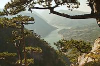 Viewpoint Banjska stena. Tara Mountain - Serbia
