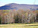 Mountain View in the Berkshires of New England, USA