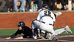 University of Sioux Falls at Augustana Baseball