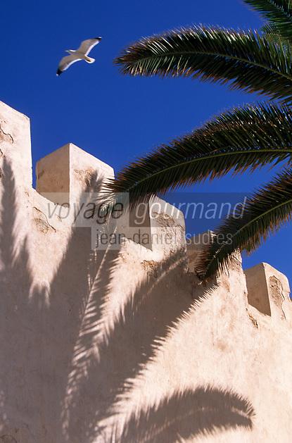 Afrique/Maghreb/Maroc/Essaouira : Détail des remparts et palmiers