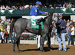 October 24, 2014: Dancing House and Julien Leparoux win the 5th race Allowance $58,000.  Candice Chavez/ESW/CSM