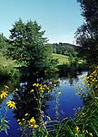 AUT, Oesterreich, Oberoesterreich, Muehlviertel, Landschaft am Suedrand des Boehmerwalds mit dem Fluesschen Muehl | AUT, Austria, Upper Austria, Muehlviertel, landscape at South Bohemian Forest with river Muehl