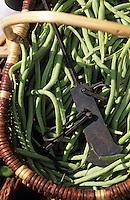 Europe/France/Languedoc-Roussillon/11/Aude/Carcassonne: Le marché BIO - Détail de l'étal de légumes de Christian Comte (Maraicher) - Détail haricots verts
