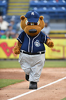 Asheville Tourists mascot Ted E Tourists during a game against the Greenville Drive at McCormick Field on May 22, 2018 in Asheville, North Carolina. The Tourists defeated the Drive 5-3. (Tony Farlow/Four Seam Images)