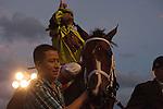 February 7, 2015: Constitution ridden by Javier Castellano wins the Donn Handicap (G1) at  Gulfstream Park. Gulfstream Park, Hallandale Beach (FL). Arron Haggart/ESW/CSM