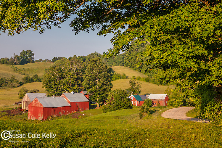 The Jenne Farm in Reading, VT, USA