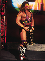 Renegade 1995                                                            By John Barrett/PHOTOlink