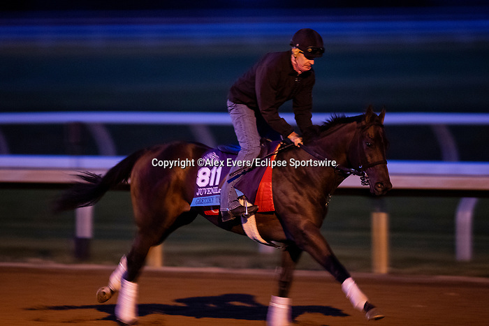 November 1, 2020: Gretzky The Great, trained by trainer Mark E. Casse, exercises in preparation for the Breeders' Cup Juvenile Turf at Keeneland Racetrack in Lexington, Kentucky on November 1, 2020. Alex Evers/Eclipse Sportswire/Breeders Cup /CSM