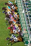 Jockeys riding their horses during Hong Kong Racing at Happy Valley Racecourse on October 24, 2018 in Hong Kong, Hong Kong. Photo by Yu Chun Christopher Wong / Power Sport Images