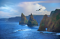 SC - Prov. CAITHNESS<br /> Duncansby Head at John o 'Groats<br /> Stacks of Duncansby<br /> <br /> Full size: 69,2 MB