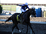 Martin Pedroza aboard Worth Repeating winner of the Ralph M. Hinds Handicap at Fairplex Park in Pomona, California on September 23, 2012.