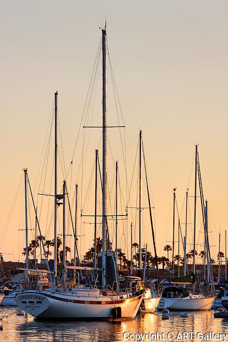 Sailboats at Anchor, Newport Harbor, CA.