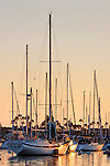 Sailboats at Anchor, Newport Harbor, CA.