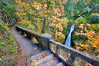 Shepperd's Dell waterfall with fall color. Columbia River Gorge National Scenic Area, Oregon