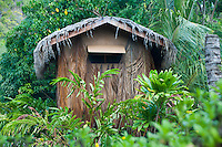 A building at Kamokila Hawaiian Village, Wailua River Valley, Kauai.