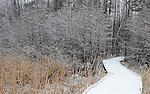 Snow coats the landscape. (DOUG WOJCIK/STEVENS POINT JOURNAL)