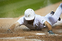 Drew Ober (18) of the Charlotte 49ers slides head first across home plate during the game against the Clemson Tigers at BB&T BallPark on March 26, 2019 in Charlotte, North Carolina. The Tigers defeated the 49ers 8-5. (Brian Westerholt/Four Seam Images)