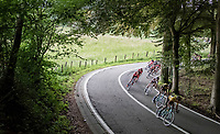 descending peloton<br /> <br /> Ster ZLM Tour (2.1)<br /> Stage 4: Hotel Verviers > La Gileppe (Jalhay)(190km)
