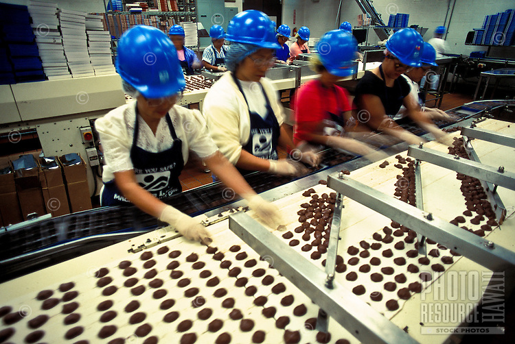 Workers on the chocolate assembly line at the Mauna Loa Macadamia Nut Processing Plant, Hilo