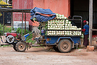 Myanmar, Burma, Kalaw.  Lettuce being loaded for local transport at Kalaw Train Station.