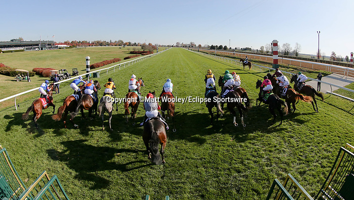 November 6, 2020: Horses break out of the starting gates during the Juvenile Turf Sprint on Breeders' Cup Championship Friday at Keeneland on November 6, 2020, in Lexington, Kentucky. Matt Wooley/Eclipse Sportswire/Breeders Cup/CSM