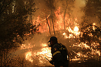 Pictured: A firefighter douses the flames with a hose at the village of Pefki in northern Evia siland, Greece. Sunday 08 August 2021<br /> Re: Forest fire in northern Evia, Greece.