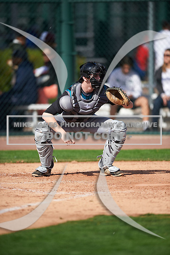 Scott Combs (11) of Divine Child High School in Northville, Michigan during the Under Armour All-American Pre-Season Tournament presented by Baseball Factory on January 14, 2017 at Sloan Park in Mesa, Arizona.  (Mike Janes/Mike Janes Photography)
