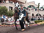 August 15, 2010.Lilly Fa Pootz  in the Paddock before the John C. Mabee Stakes, at Del Mar Thoroghbred Club, Del Mar, CA