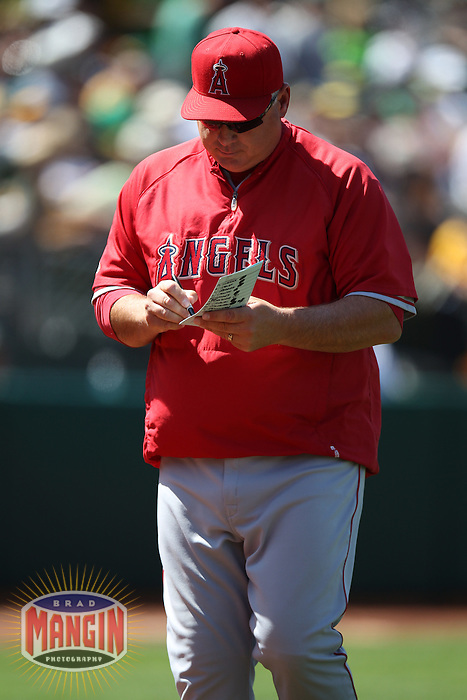 OAKLAND, CA - MAY 23:  Manager Mike Scioscia #14 of the Los Angeles Angels writes on his line up card during the game against the Oakland Athletics at the Oakland Coliseum on Wednesday May 23, 2012 in Oakland, California. Photo by Brad Mangin