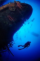 Ship wreck, artificial reef, Hilma Hooker with many scuba divers, Bonaire, Netherlands Antilles, Caribbean, Atlantic