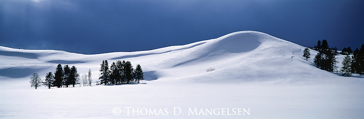 Blanketing the Sulfur Hills, deep snow covers much of the life in Hayden Valley, Yellowstone National Park, Wyoming.