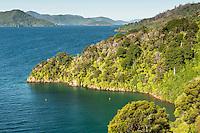 Governors Bay in Marlborough Sounds, Nelson Region, Marlborough, South Island, New Zealand