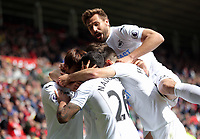 SUNDERLAND, ENGLAND - MAY 13: Kyle Naughton of Swansea City celebrates his goal while mobbed by team mates and co=scorer Fernando Llorente (TOP) during the Premier League match between Sunderland and Swansea City at the Stadium of Light, Sunderland, England, UK. Saturday 13 May 2017