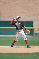 Frankely Hurtado (2) during the Dominican Prospect League Elite Underclass International Series, powered by Baseball Factory, on August 1, 2017 at Silver Cross Field in Joliet, Illinois.  (Mike Janes/Four Seam Images)