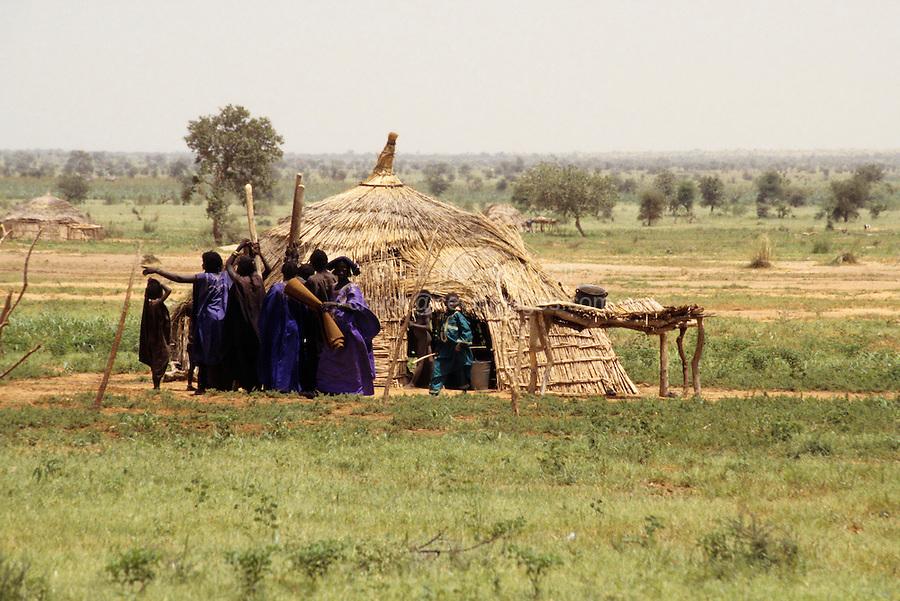 Near Bankilare, southwestern Niger - Bella Hut, House, Shelter