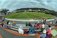 A general view during the men's Dream11 Super Smash cricket match between the Wellington Firebirds and Northern Knights at Basin Reserve in Wellington, New Zealand on Saturday, 9 January 2021. Photo: Dave Lintott / lintottphoto.co.nz