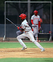 Elly De La Cruz - 2021 Arizona League Reds (Bill Mitchell)