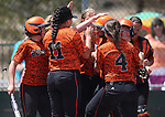 The Douglas Tigers meet Makayla Shaver at the plate after she hit a home run in a game against the Galena Grizzlies in the first round of the NIAA northern region softball tournament in Reno, Nev., on Thursday, May 15, 2014. Galena won 5-4.<br /> Photo by Cathleen Allison
