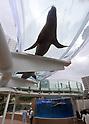 New Attraction at Sunshine City Aquarium