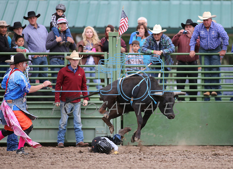 Jett Rupert competes at the Smackdown at Fuji Park in Carson City, Nev., on Friday, June 5, 2015. <br /> Photo by Cathleen Allison