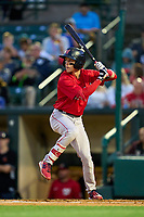 Worcester Red Sox Grant Williams (22) bats during a game against the Rochester Red Wings on September 3, 2021 at Frontier Field in Rochester, New York.  (Mike Janes/Four Seam Images)