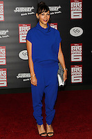 HOLLYWOOD, LOS ANGELES, CA, USA - NOVEMBER 04: Rashida Jones arrives at the Los Angeles Premiere Of Disney's 'Big Hero 6' held at the El Capitan Theatre on November 4, 2014 in Hollywood, Los Angeles, California, United States. (Photo by Celebrity Monitor)