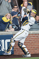 Michigan Wolverines catcher Harrison Wenson (7) catches a pop foul against the Michigan State Spartans during the NCAA baseball game on April 18, 2017 at Ray Fisher Stadium in Ann Arbor, Michigan. Michigan defeated Michigan State 12-4. (Andrew Woolley/Four Seam Images)