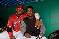 Batavia Muckdogs Albert Guaimaro (left) and Dalvy Rosario (right) in the dugout for a rain delay during a NY-Penn League game against the Auburn Doubledays on June 15, 2019 at Dwyer Stadium in Batavia, New York.  Batavia defeated Auburn 7-5.  (Mike Janes/Four Seam Images)
